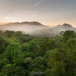 Lot-18-Sunrise-DJI_0489-Image-Credit-Martin-Stringer-1